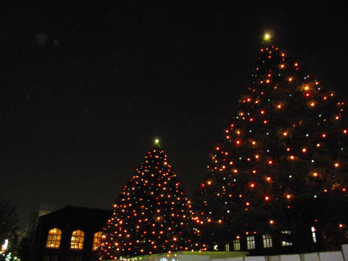 オーソドックスなクリスマスツリー Classical X Mas Tree 写真の旅 世界 日本 無料壁紙 Free Photo Wallpaper Japan World